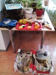 Expozitie de fructe si legume vesele 10